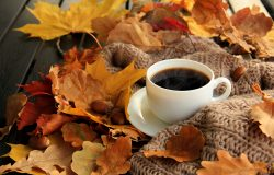 Why Autumn Is The Best Season Of The Year