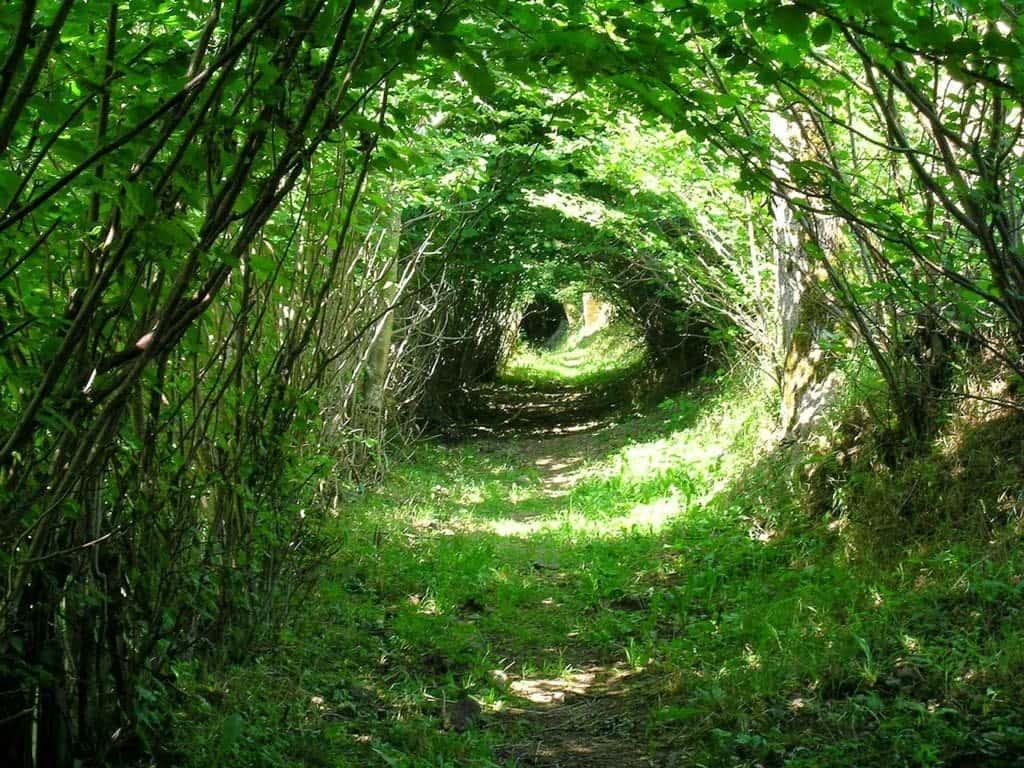 Un Gran Túnel