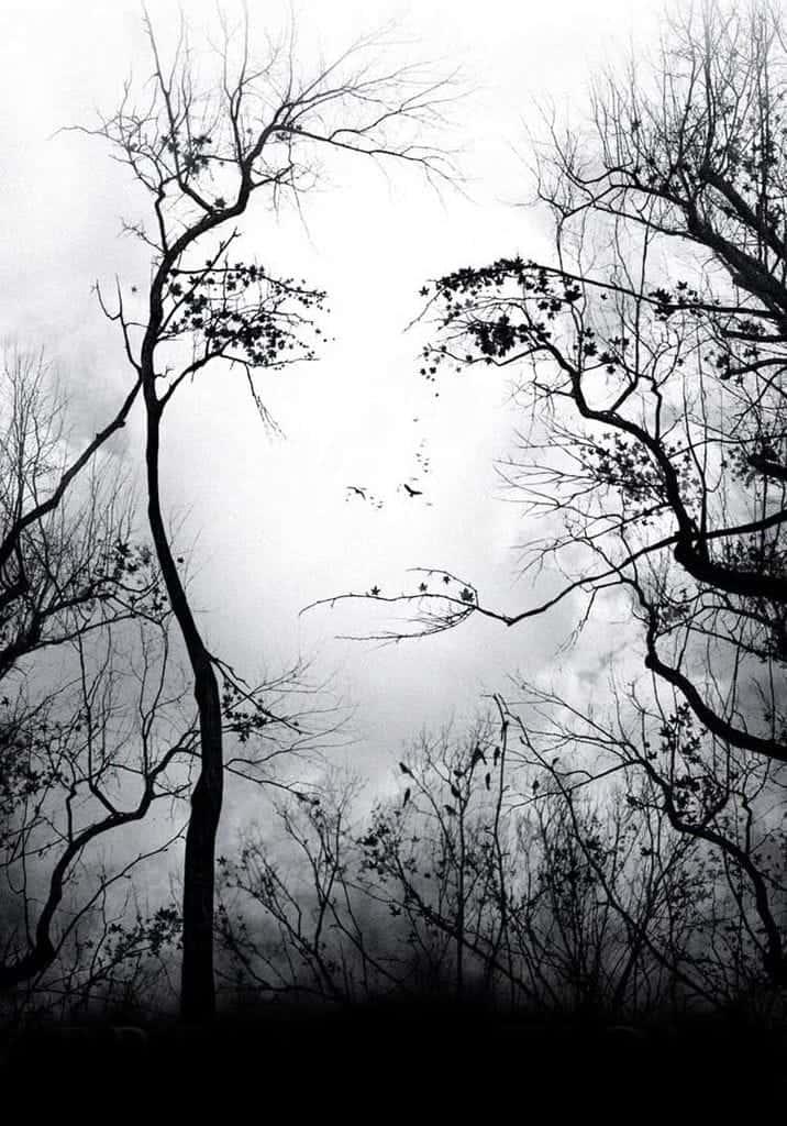 Una Mujer Mirándote