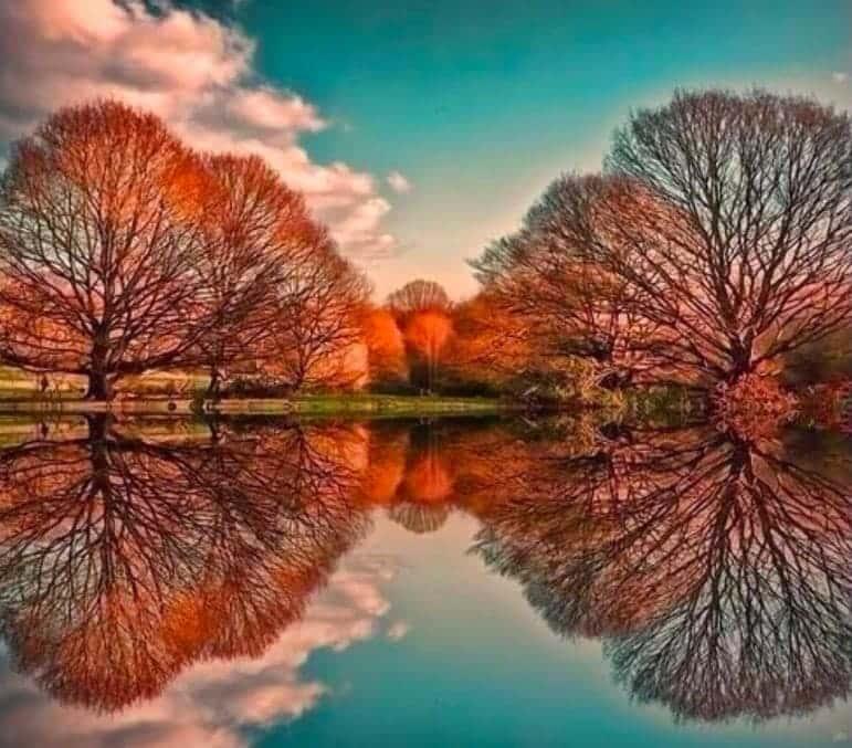 Un Espejo Perfecto
